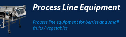 Processing Equipment for Blueberries