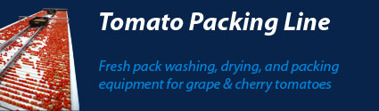 Tomato Packing Equipment