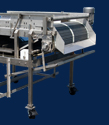 Process Line Berry Packing Equipment